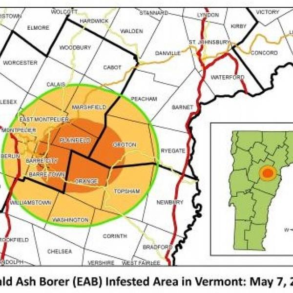 EAB Infested area